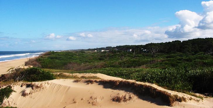 Ocean Park en Punta del Este